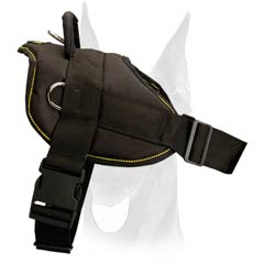 All-weather nylon Doberman harness