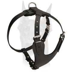 Strong durable Doberman harness