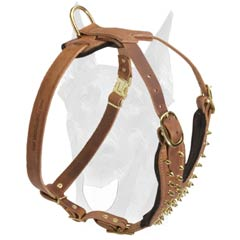 Soft Leather Harness for Doberman Training