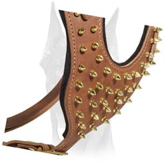 Brass Spiked Leather Chest Plate with Interior Padding