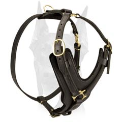 Best value leather Doberman harness