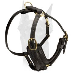 Durable leather harness for Doberman