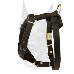 Easy adjustable Doberman puppy harness