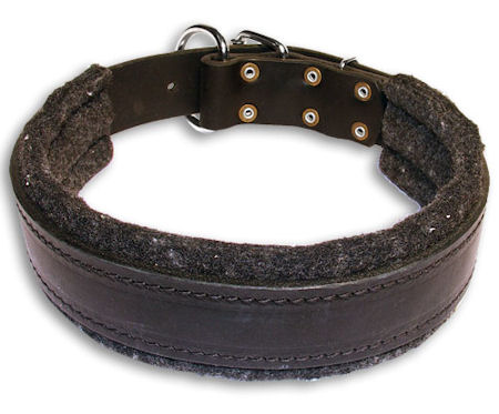 Padded Collar for Doberman 1.5 inch (40 mm) Wide