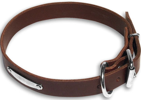 Doberman Id Collar Brown collar 23'' /23 inch dog collar-C456