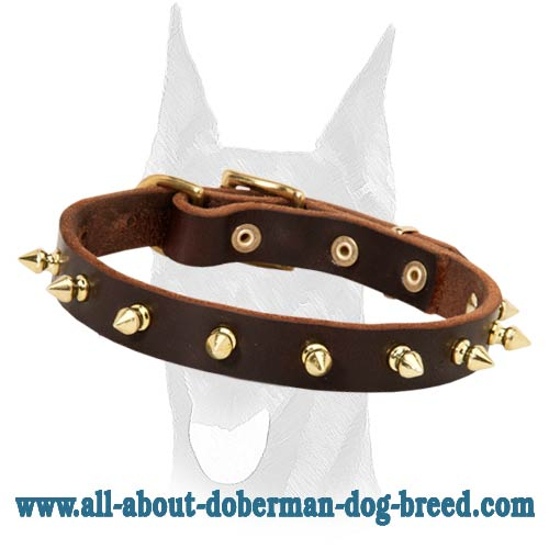 Handmade luxury spiked leather collar for Doberman