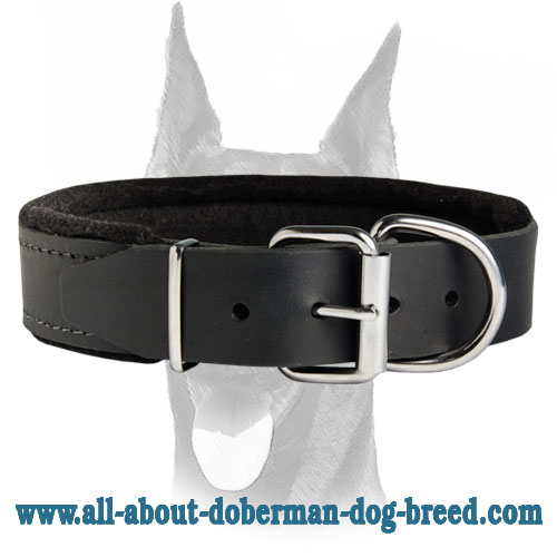 Soft thick felt padded Doberman leather collar