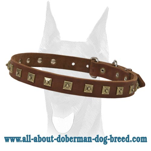 Leather decorated collar with attractive brass studs for Doberman