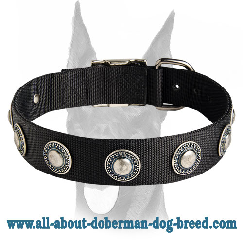 Exquisite design nylon collar with silver conchos