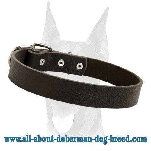 Handcrafted classic leather Doberman collar