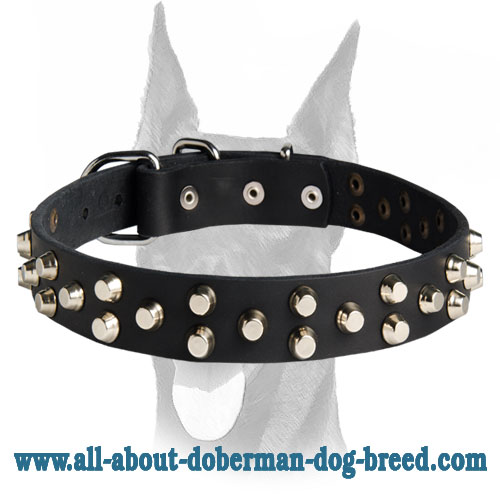 Luxury studded leather collar with silver pyramids for Doberman