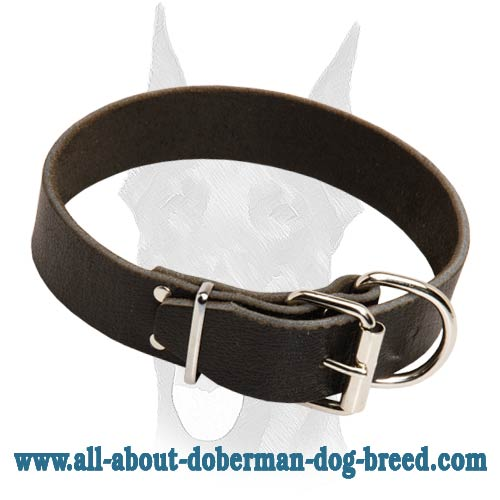 Super strong heavy duty leather Doberman collar