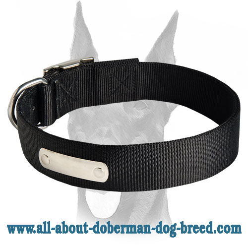 Best training 2 ply nylon collar with ID-tag for Doberman