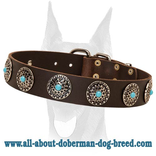 Royal leather collar with silver-like circles and blue stones for Doberman