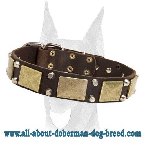 Gorgeous leather Doberman collar with massive plates and pyramids