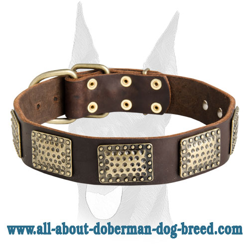 Luxury handcrafted leather collar for Doberman