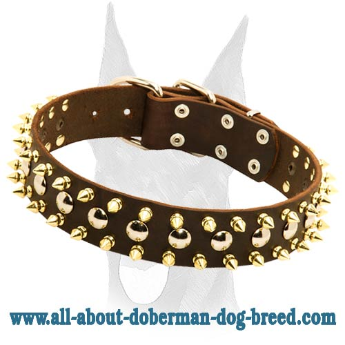 Luxury design leather collar with spikes and studs for Doberman