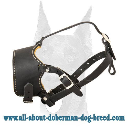 Stop Dog Barking special design muzzle for Doberman