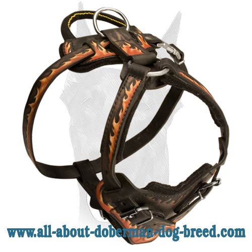 "Handpainted agitation leather harness ""Flames"" for Doberman"