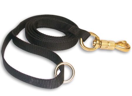 Nylon Dog Leash 6 ft-72 inch