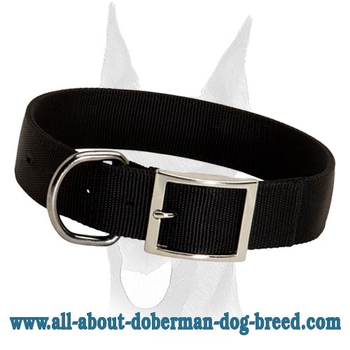 2 ply durable nylon collar for Doberman