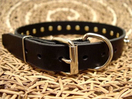 narrow leather dog collar with spikes