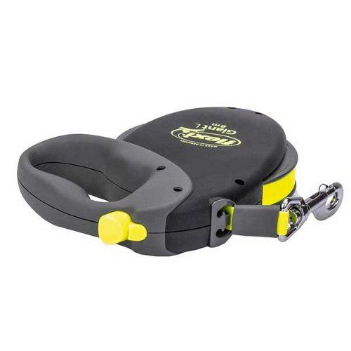Retractable Doberman leash with braking system