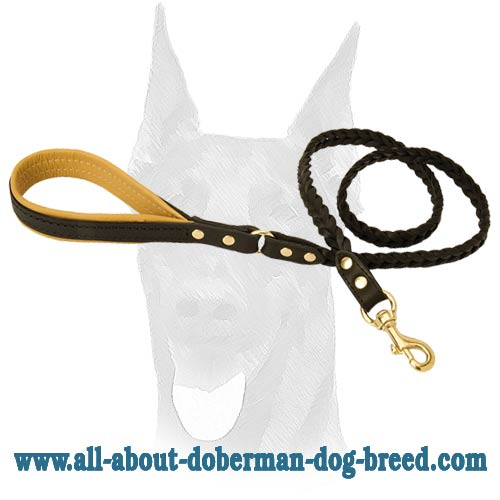 Strong attractive leash for Doberman