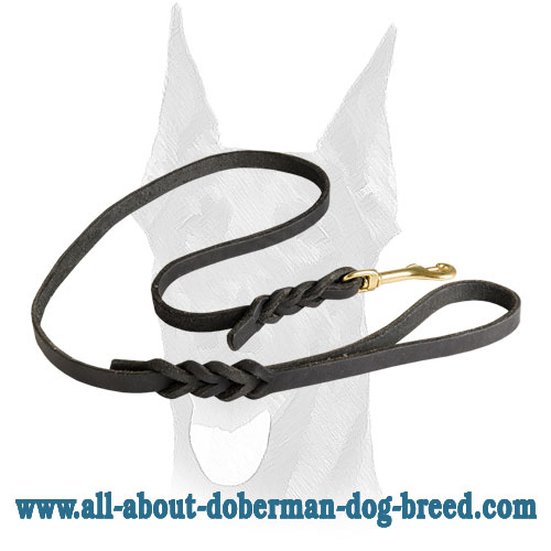 Luxury braided design for leather Doberman leash