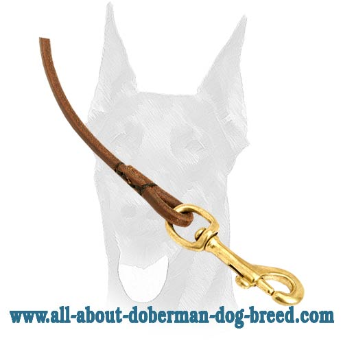 Leather Doberman leash with brass snap hook