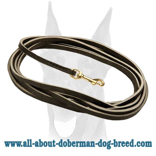 Tracking and training Doberman leash