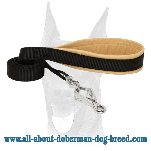 Nylon Doberman leash with scissors type snap hook