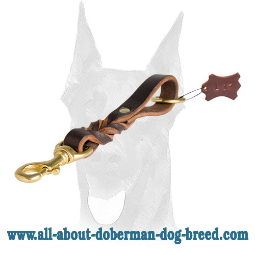 Attractive leash for Doberman