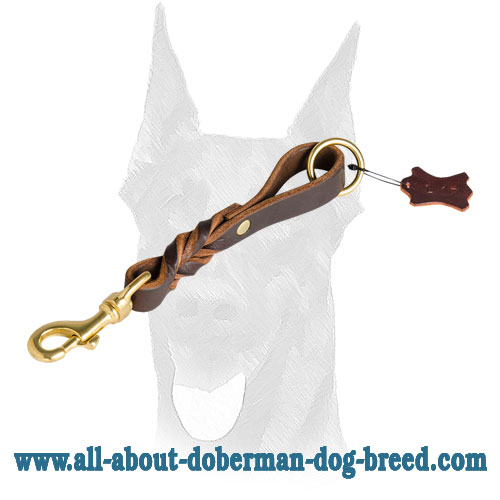 Brass fittings for leather Doberman leash