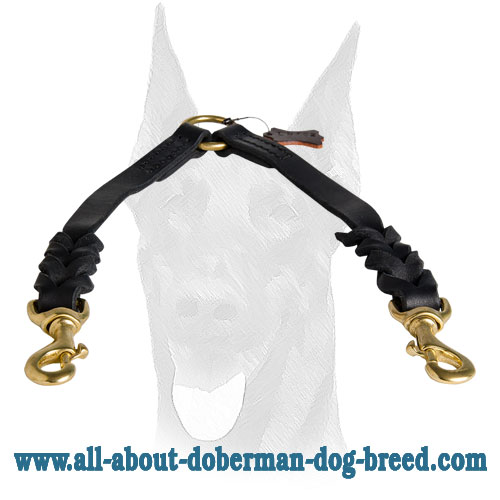 Reliable fittings for Doberman leash