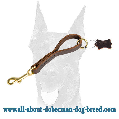 Leather leash with brass fittings for Doberman