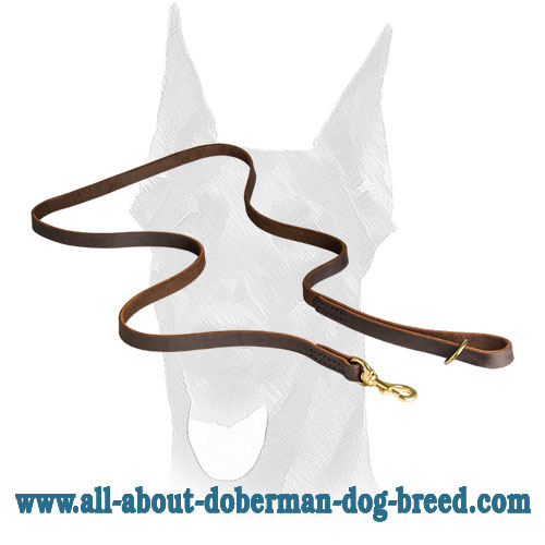 Brass floating D-ring and strong snap hook for Doberman leash