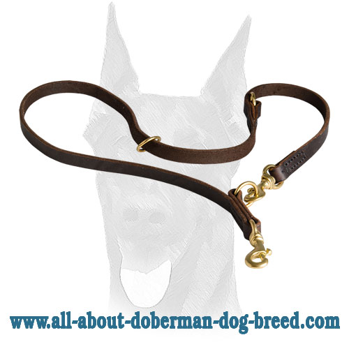 Leather Doberman leash with extra D-ring