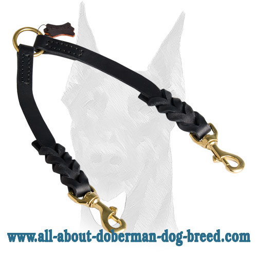 Leather short braids for Doberman collar