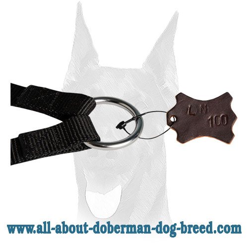 Nylon leash coupler for Doberman dogs