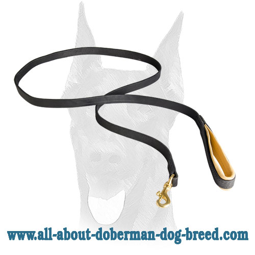 Double stitched leather Doberman leash