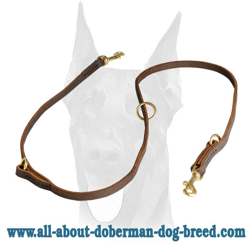 Carefully stitched and durable leather Doberman leash