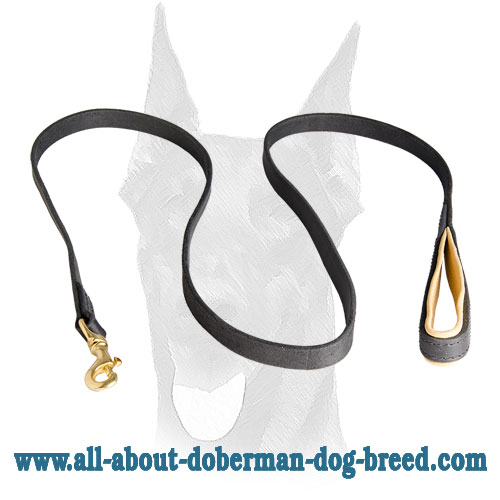 Leather Doberman leash with Nappa padded handle