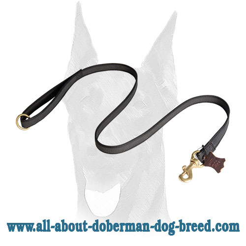 Nylon Doberman leash for training