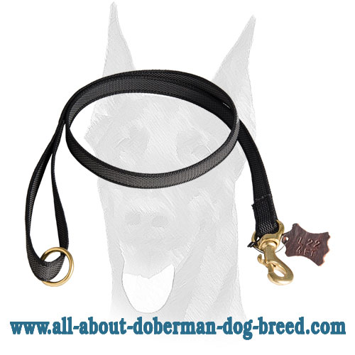 Reliable brass hardware for Doberman leash