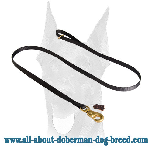 Smart snap hook and floating brass O-ring for Doberman leash