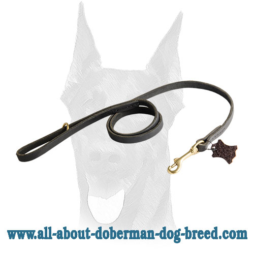 Shiny brass snap hook and O-ring for Doberman leather leash