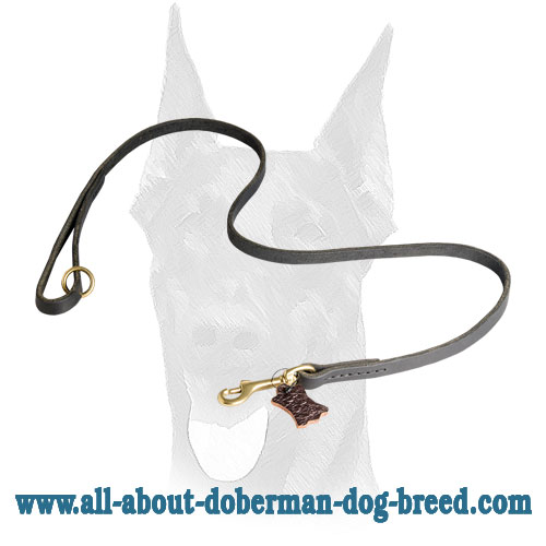 Stitched Doberman leather leash with comfy handle