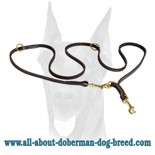 Leather Doberman leash with two snap hooks and extra D-rings
