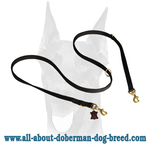 Multimode nylon Doberman leash with brass snap hooks and three O-rings